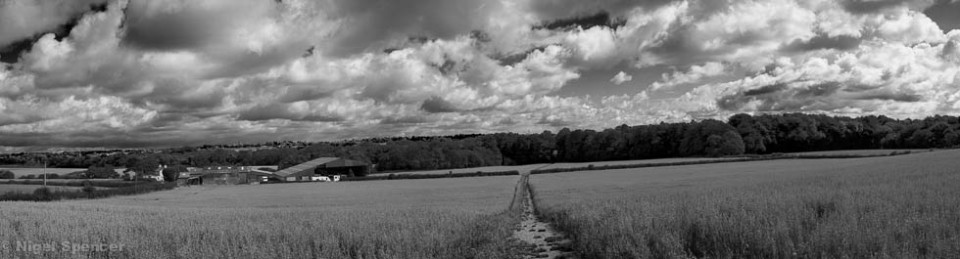 Nigel Spencer Photography