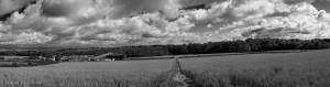 NSpencer_20100721_field_Panorama1B&W